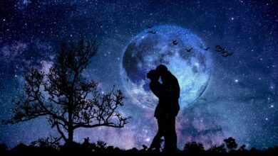 Photo of Moon Compatibility: Moon Signs to Navigate Relationships