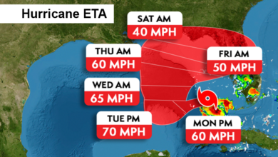 Photo of Wet and Windy Beginning to the Week in South Florida Thanks to Tropical Storm Eta