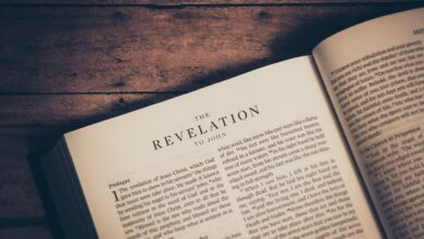 Photo of Revelation's Awesome Story – We Win!