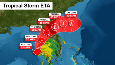 Photo of Tropical Storm Eta Will Not Leave Florida Alone, Bringing Heavy Rain and Winds